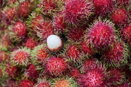 Rambutan, wie isst man die exotische Beere?