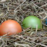 Ostereier natürlich färben mit Naturfarben