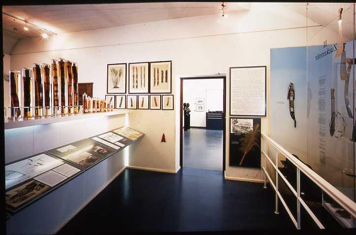 5_Zucker-Museum Innenansicht