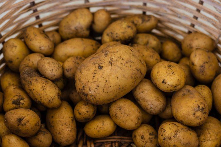 Kartoffel Museum in München