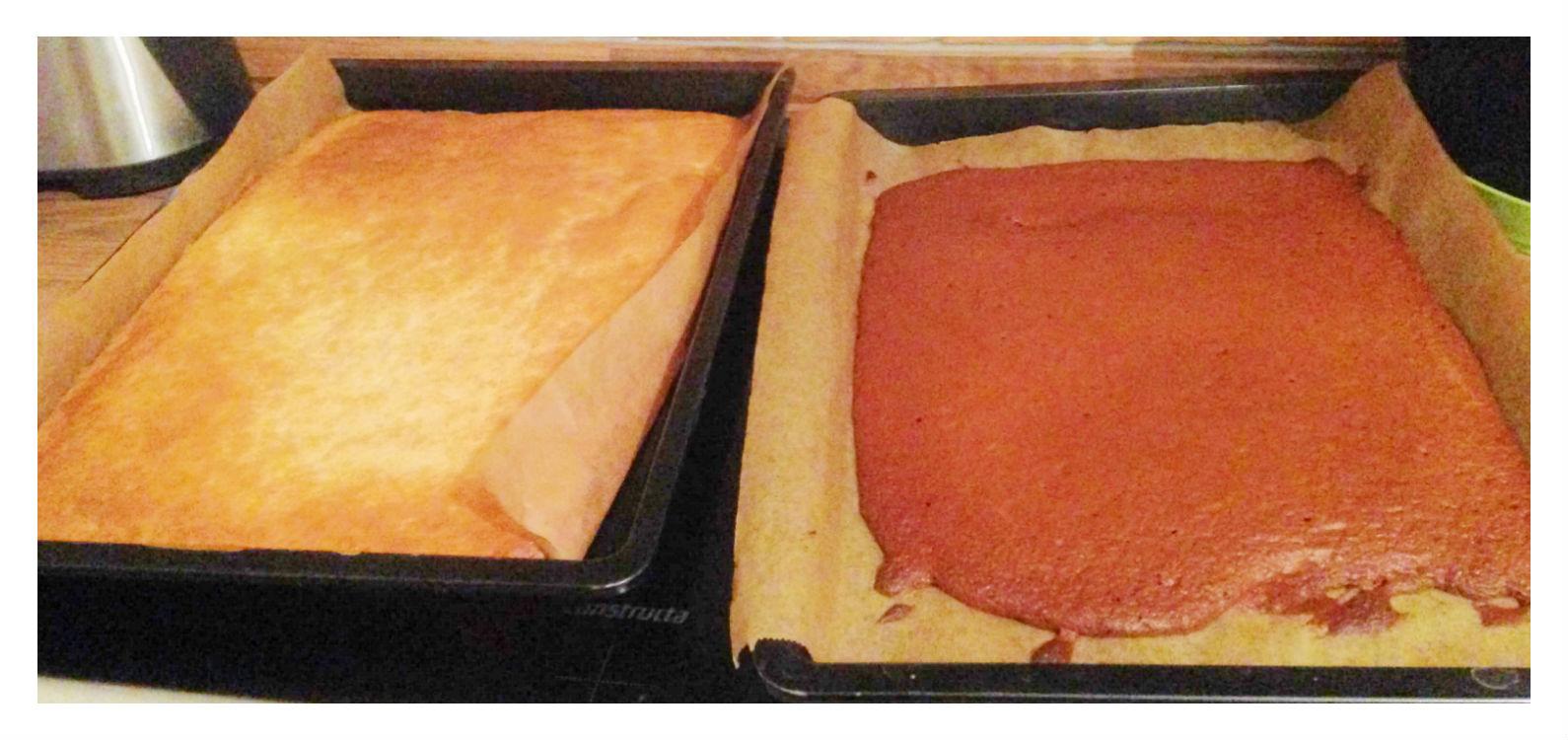Krümelkuchen - zwei Backbleche mit je einem hellem und dunklem Teig